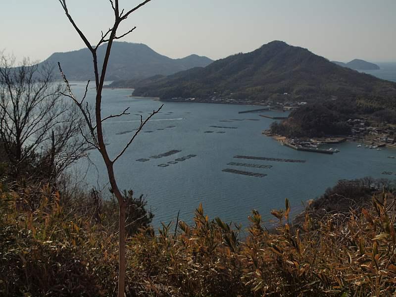 P2141190siroyama