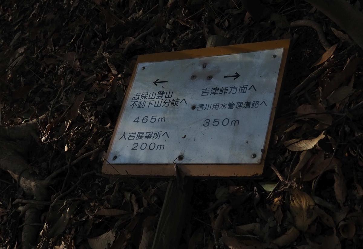 P1133654