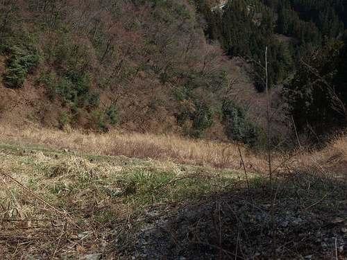 P3214031kayaba